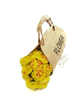 Daffodils in Carry Bag